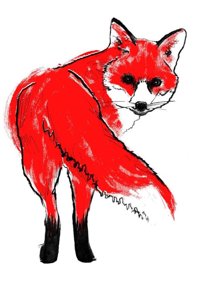 Tiff-Howick-red-fox-I-screenprint